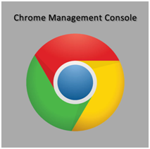 GOOGLE CHROME MANAGEMENT CONSOLE, BUSINESS PERPETUAL LICENSE